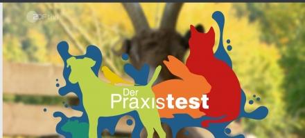 ZDF Kika Das Haustiercamp
